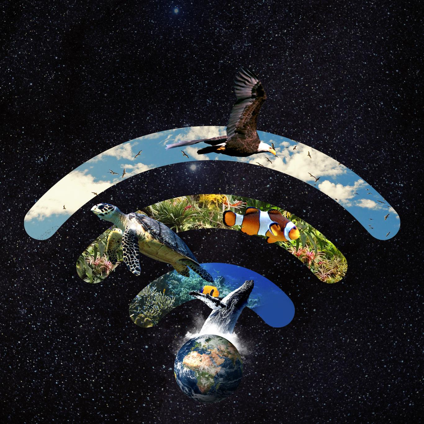 Icono campaña Hora del Planeta 2021